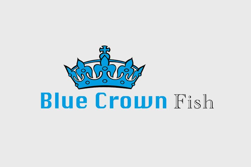 Blue Crown Fish